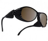 Gletscherbrille Polarized Altitude Unisex black
