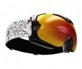 Skibrille Guard L VI Unisex black