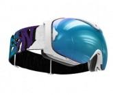 Skibrille Guard L VI Unisex white
